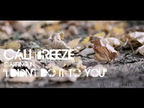 Cali Breeze- I didnt do it to you