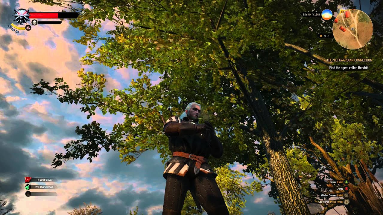 The Witcher 3' Has A Serious Foliage Problem