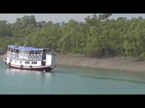 sundarban tour In Boating a River
