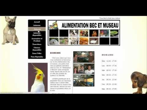 Site Internet Animalerie Et Salon De Toilettage Matane Rimouski Rivière-du-Loup Québec Montréal
