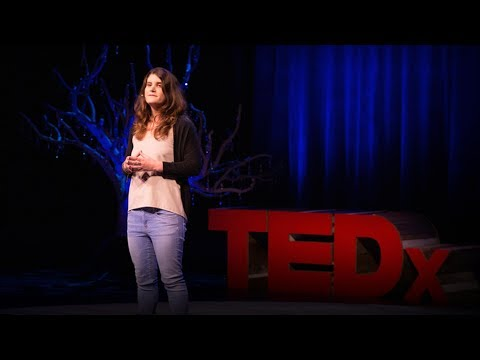 These bacteria eat plastic | Morgan Vague