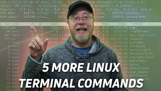 5 More Linux Terminal Commands for Beginners