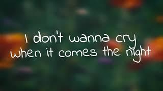 Rauf Faik - Never Lie To Me - English Version - детство - Lyrical Video