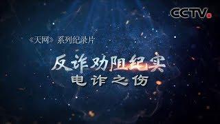 《天网》 反诈劝阻纪实 电诈之伤 | CCTV社会与法