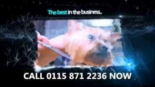 Dog Groomer Nottingham | Call 01158 712 236 For Expert Dog Grooming