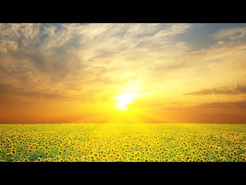 "Peaceful Music, Relaxing Music, Instrumental Music ""A Moment In Time"" by Tim Janis"