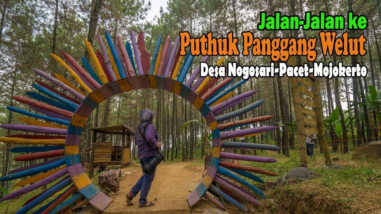 Jalan-Jalan ke Puthuk Panggang Welut, Pacet Mojokerto