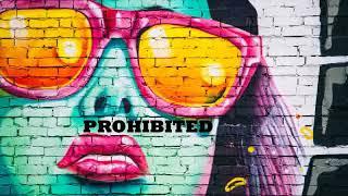 Solomun ◆ Stephan Bodzin ◆ Tale Of Us ◆ Boris Brejcha ◆ Maceo Plex ◆ Recondite | Prohibited Mix 2019