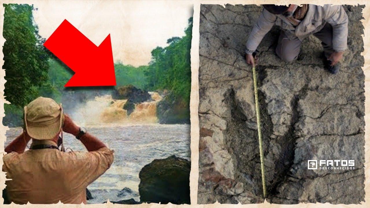 O último dinossauro vivo poderia estar escondido no Congo – E se for verdade?