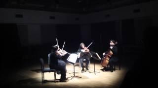 Qvixote Quartet Schumann op 41.no1 Scherzo Presto - Intermezzo