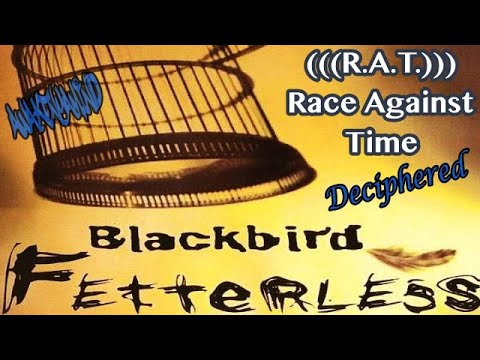 Esoteric Hip Hop Deciphered - (We Are A) Race Against Time By Blackbird  ((432Hz))