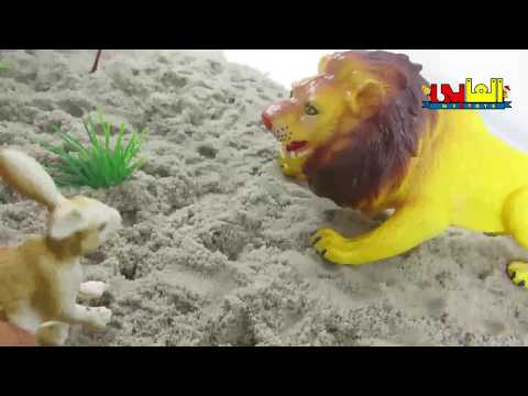 wild Animals Toys , lion the king & The smart bunnys  trick ,  Learn Wind Zoo Animals With Toys