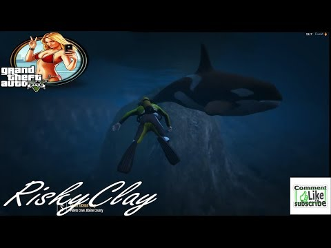 GTA-5 Law breakers Role play.Greg,and Risky goes scuba diving,and runs into a school of Shark's(CIV)