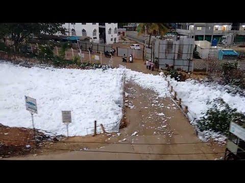 Bellandur Lake in Bengaluru full with Toxic foam, Viral video