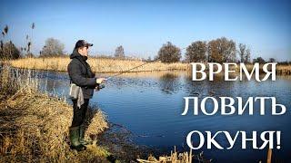 Окунь лупит с каждой проводки Весна время микроджига Ловля окуня на ультралайт Рыбалка 2021
