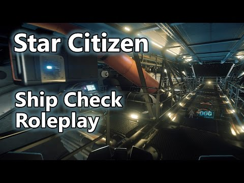 [ASMR] Star Citizen - Starfarer ship condition check roleplay (60fps)