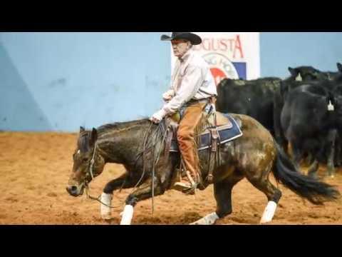 2017 AUGUSTA FUTURITY NCHA MERCURIA OPEN FINALISTS