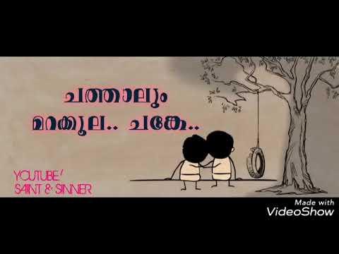 Nammude Friends Miss You Allwhatsapp Status Malayalam