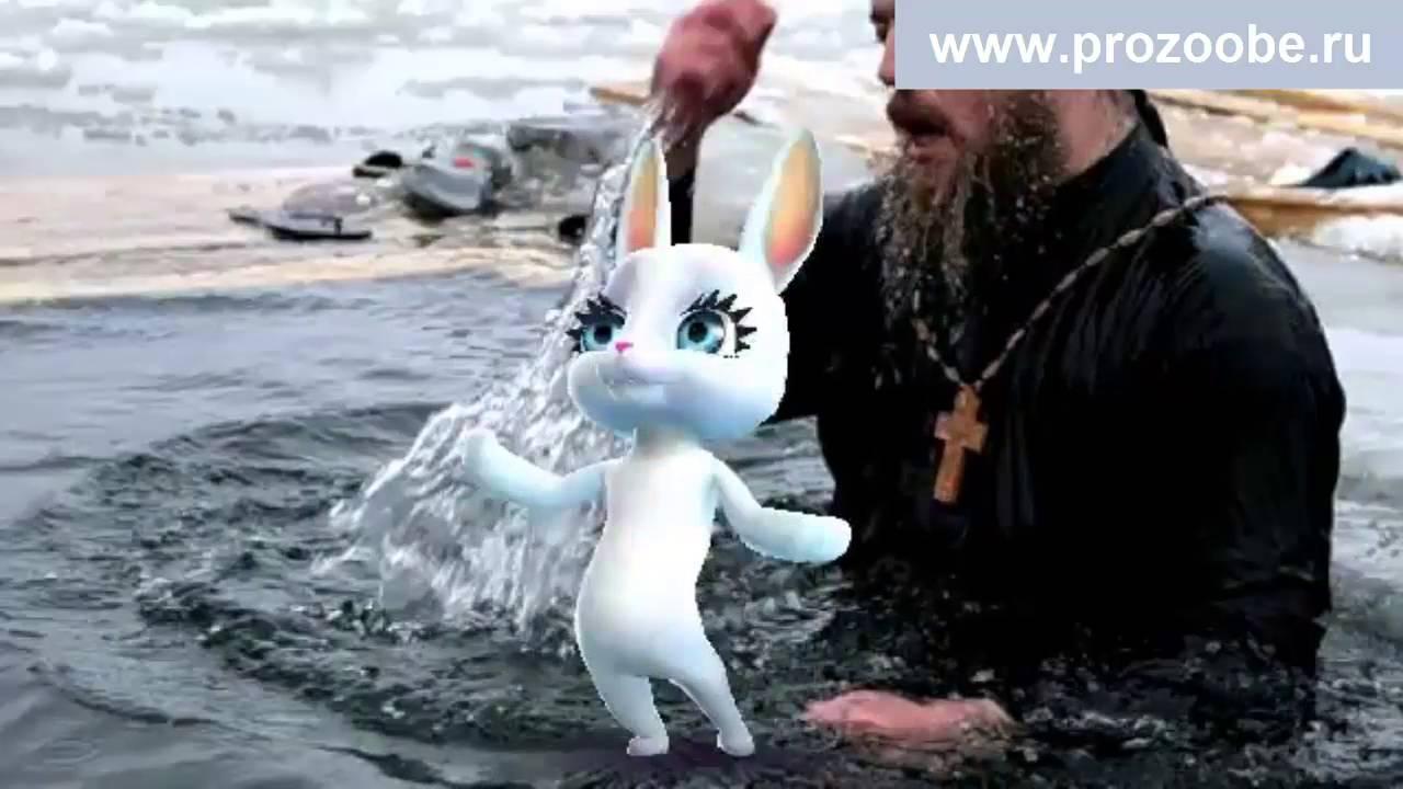 Крещение поздравление зайка