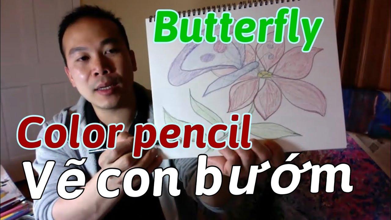 Vẽ bướm hút mật hoa – Butterfly eating flowers – Liem Duong art