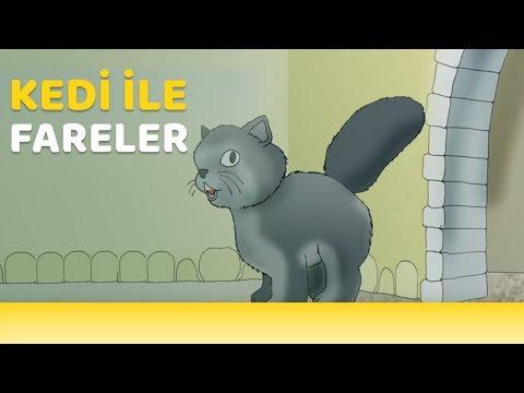 Kedi ile fareler - La Fontaine Masalları