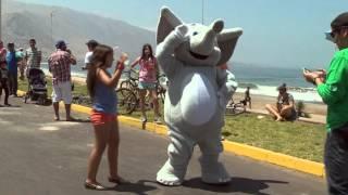 Carreras de Autos Locos INACAP Iquique 2015