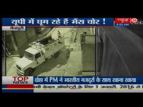 CCTV camera catche Buffalo Stolen : Mainpuri UP