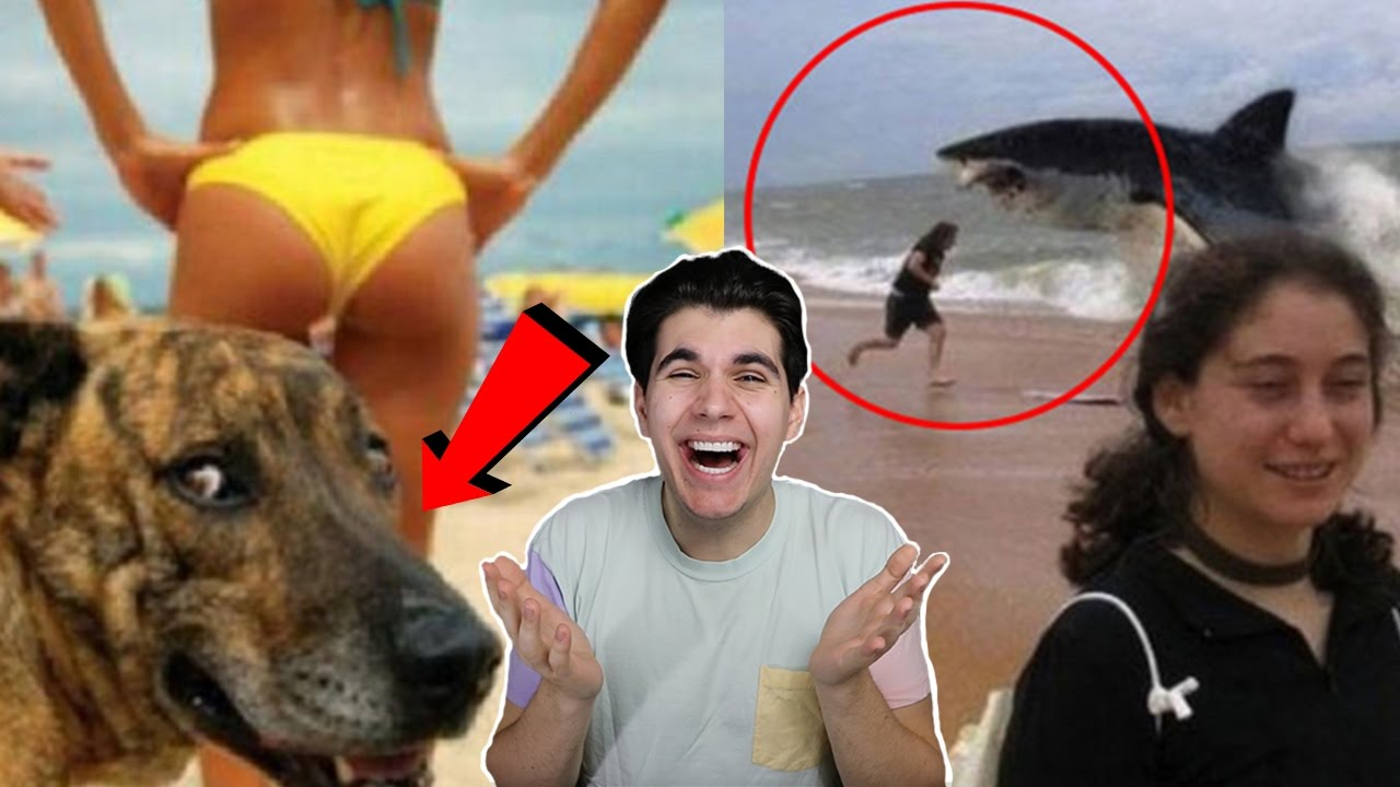 THE FUNNIEST PHOTOBOMBS EVER YouTube - 35 hilarious animal photobombs ever