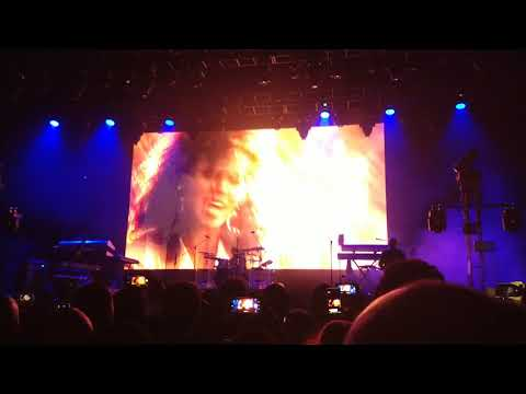 Brittany Elyse - They Are Not Muting! The Jacksons Perform Michael Jackson Songs !