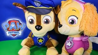 PAW PATROL Nickelodeon Paw Patrol Skye & Chase Talking Figures Paw Patrol Toy Video