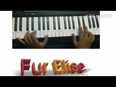 Fur Elise By Beethoven On Keyboard
