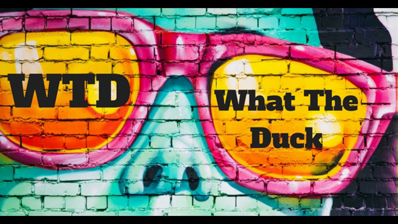 What does wtd mean in texting