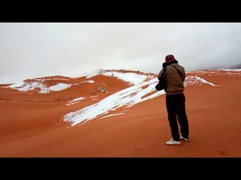 ALGERIA. Snow in the Sahara desert