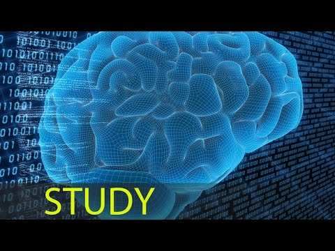 3 Hour Focus Concentrate: Study Music, Focus Music, Alpha Binaural Waves ☯343