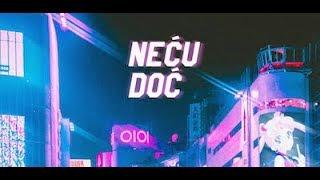 Goca R.I.P. x Elon - Neću Doć (Lyrics Video)