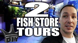 2 Fish store tours and Discus Aquarium Set Up thumbnail
