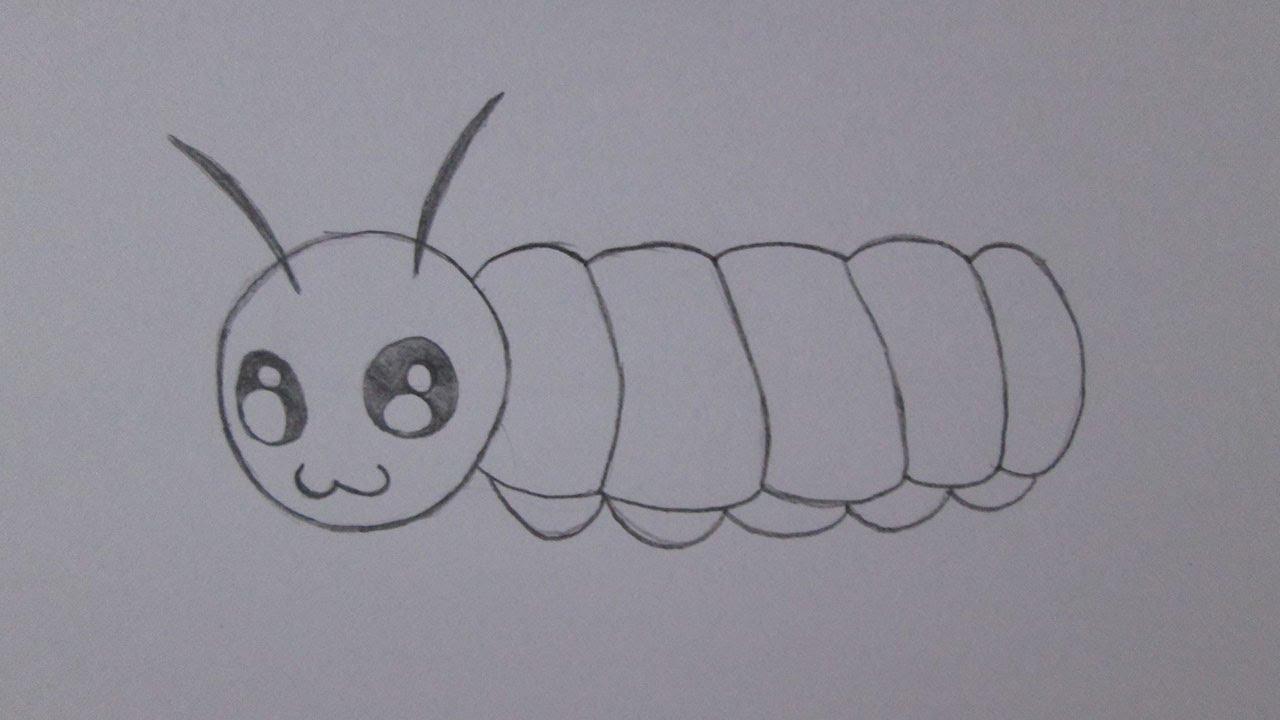 Cómo dibujar una oruga - YouTube