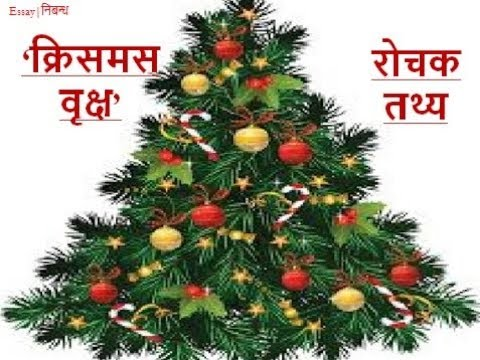 Interesting Facts About Christmas Tree In Hindi क र समस