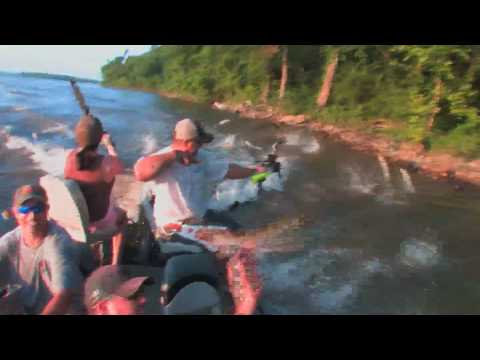 The Attack of the Jumping Asian Carp - Reel Shot TV