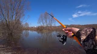 Этот ЗУД Надо спасать Рыбалка на Оке весной 2021