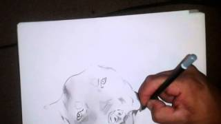 drawing a pitbull