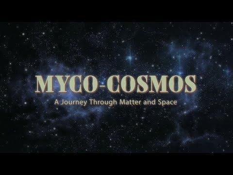 MYCO-COSMOS - Paul Stamets and Laraaji