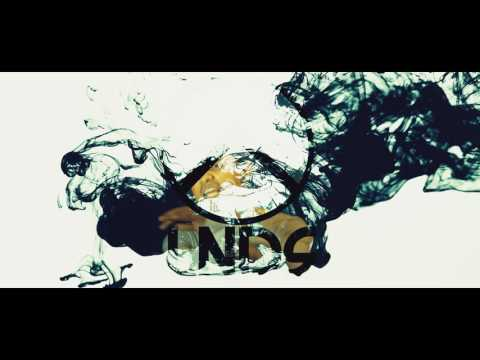 LNDS - POLARITAS (Official Music Video)