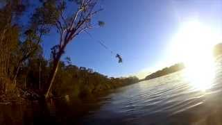 Backpacking East coast of Australia; cliff-jumping, rope-swinging, diving with manta rays Gopro