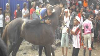 Ada anak tertabrak saat balapan Kuda di Tasikmalaya