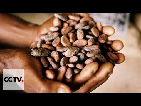 Talk Africa 03/06/2016 Africa and commodities trade
