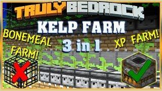 Truly Bedrock S1 EP05 : Kelp Farm, Xp Farm, Bonemeal Farm 3 n 1 [ Minecraft, MCPE, Bedrock Edition ]
