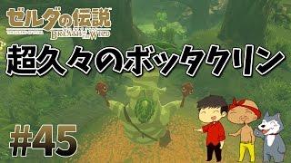 【任天堂スイッチ】ゼルダの伝説#45 指名手配してたボッタクリンをコログの森の中で発見!【生声実況】 thumbnail