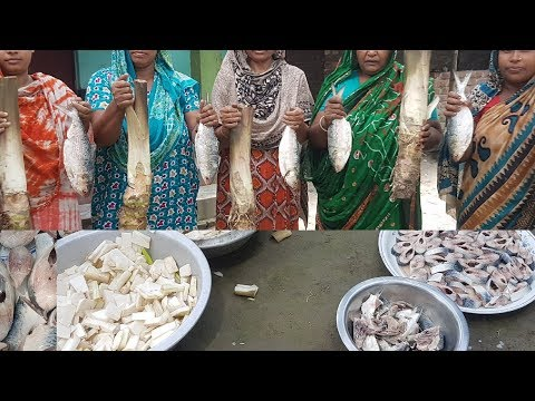 Water Taro & Hilsa Fish Mix Mashed Curry Cooking/ Charity Food / Most Tasty & Healthy Village Food