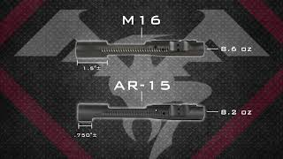 Quickies Ep. 08 - What's the Difference Between AR-15 and M16 Bolt Carriers?